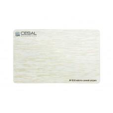 Рейка Cesal Стандарт B20 Желто-синий штрих